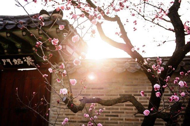 日韓関係の再構築のための三つの視点 ―フローの韓国・ストックの日本―