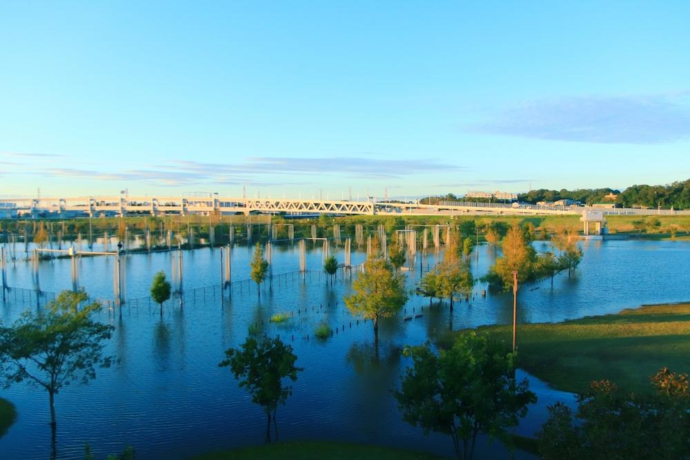 巨大水災害の防災・減災とリスクガバナンス